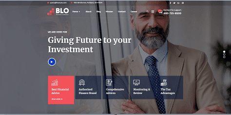 BLO Demo Website | Professional Website Design Services